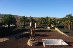 Blick von der Dachterasse in den Palmengarten