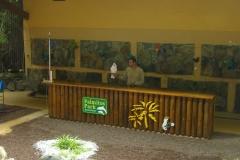 Papageienshow