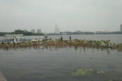 Xuanwu See